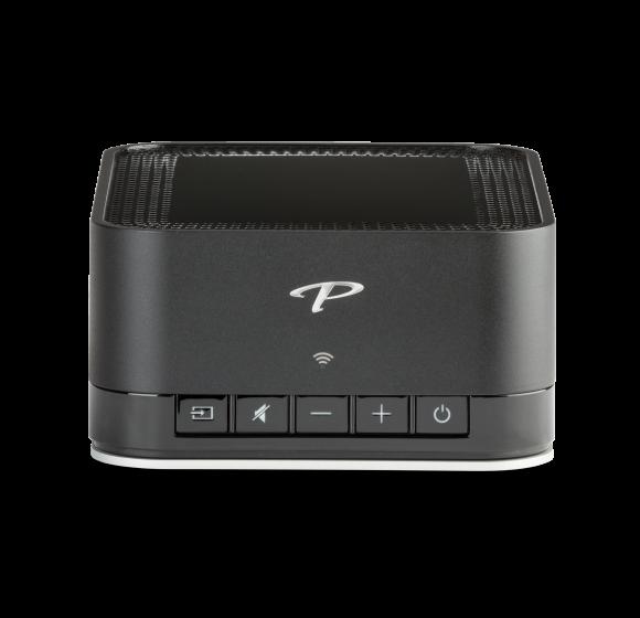Paradigm Premium Wireless Series PW AMP Stereo Amplifier